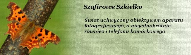 Szafirowe_Szkielko