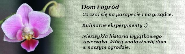 Dom_i_ogrod